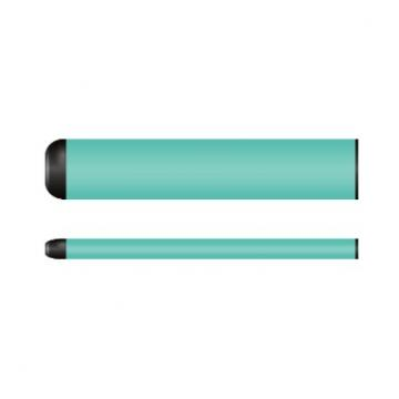 Top Manufacturer OEM in China Electric Cigarette Wholesale Disposable 1000 Puffs Vape Pen